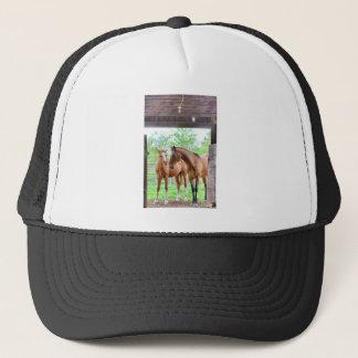 Deux amis de cheval casquette