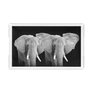 Deux éléphants - plateau acrylique