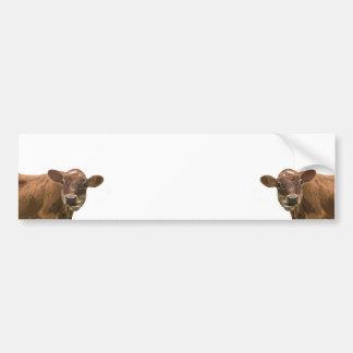 Deux vaches autocollant de voiture