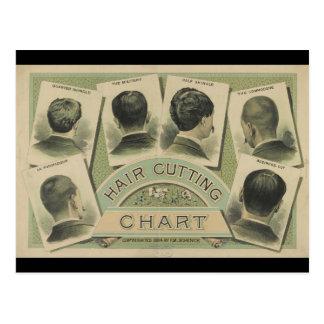Diagramme vintage de coupe de cheveux (1884) carte postale