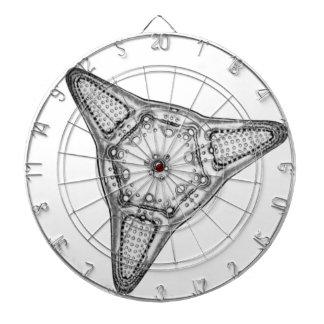 Diatomeeën Dartbord