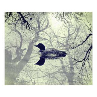 Dingue noir et blanc sur une copie de lac impression photo