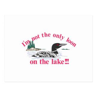 Dingue sur le lac cartes postales