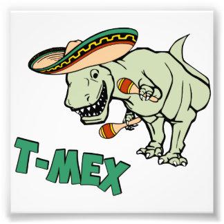 Dinosaure mexicain de Tyrannosaurus de T-Mex T-Rex Photographie