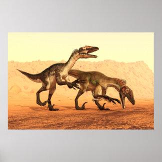 Dinosaures de Raptor dans le désert Poster