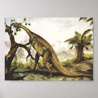Dinosaures vintages, Plateosaurus frôlant sur des Poster