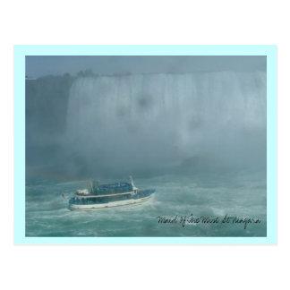 Domestique de la brume chez Niagara Carte Postale