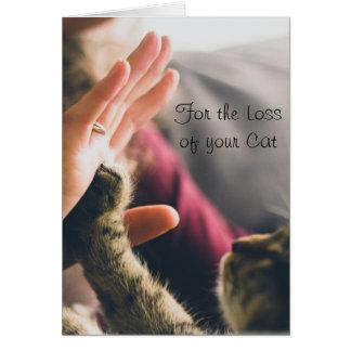 Donner de patte de chat Haut-cinq Carte De Vœux