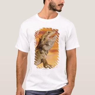 Dragon barbu (Pogona Vitticeps) sur la roche, T-shirt