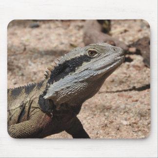 Dragon d'eau oriental tapis de souris