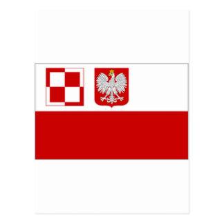 Drapeau de l'Armée de l'Air de la Pologne Carte Postale