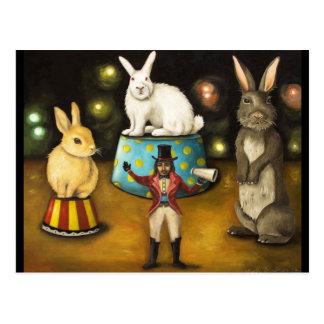 Dressage des lapins géants carte postale