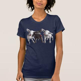 Drie Grappige Brutale Schapen T Shirt