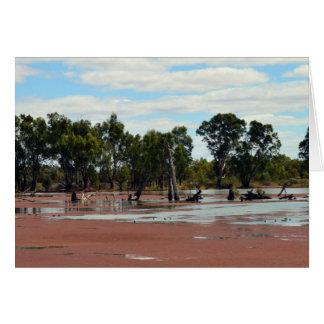 Duckweed_River_Murray, _Australia, _Birthday_Card Carte De Vœux