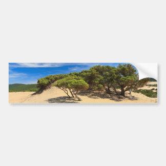 Dune de Piscinas - Sardaigne, Italie Autocollant De Voiture