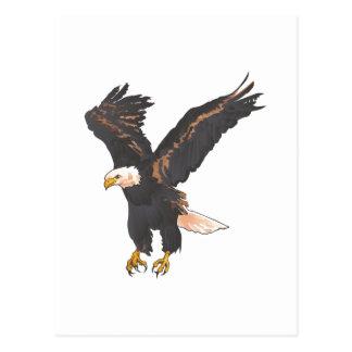 Eagle chauve carte postale
