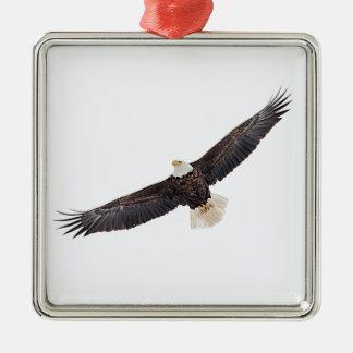 Eagle chauve en vol ornement carré argenté