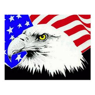 Eagle chauve et carte postale de drapeau américain
