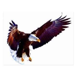 Eagle en vol carte postale