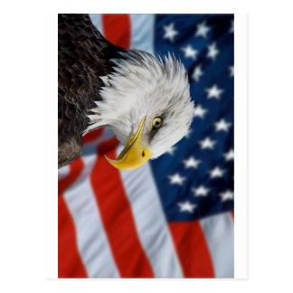 Eagle et drapeau carte postale