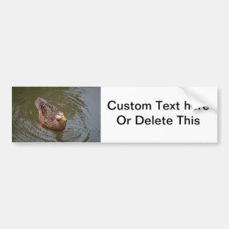 eau potable de canard de canard femelle de poule autocollant de voiture