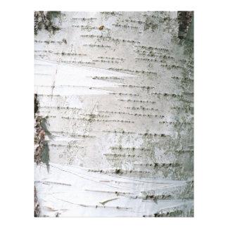Écorce de bouleau prospectus 21,6 cm x 24,94 cm
