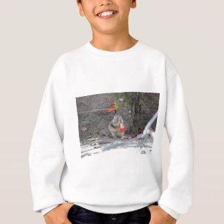 Écureuil affectueux de fleur sweatshirt