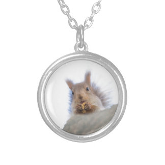 Écureuil avec un collier pendant rond de noix