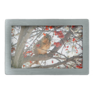 Écureuil d'hiver dans l'arbre de baie boucle de ceinture rectangulaire