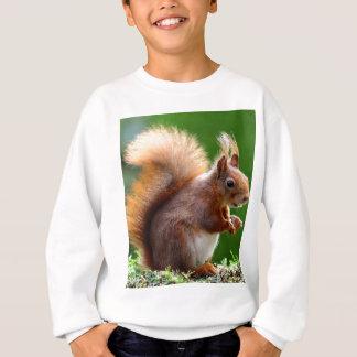 Écureuil mignon dans le jardin sweatshirt