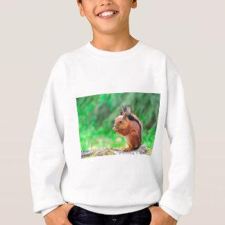 Écureuil mignon sweatshirt