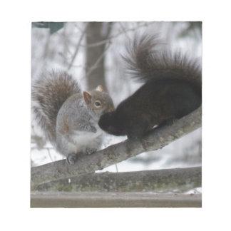 Écureuil noir bloc-note