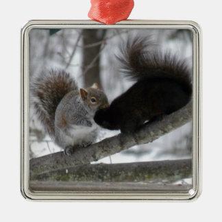 Écureuil noir ornement carré argenté
