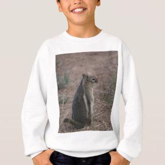 Écureuil réfléchi sweatshirt