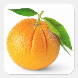 Één oranje fruit met bladeren vierkant sticker
