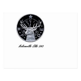 Élans 543 de Nelsonville Carte Postale