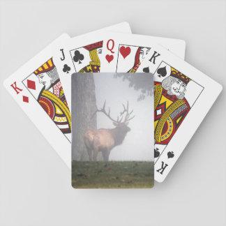 Élans de Taureau Jeux De Cartes