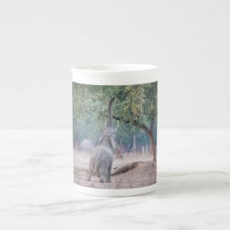 Éléphant atteignant pour l'arbre d'acacia mug