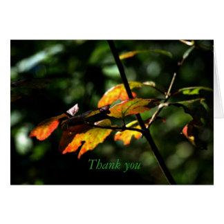 En automne carte