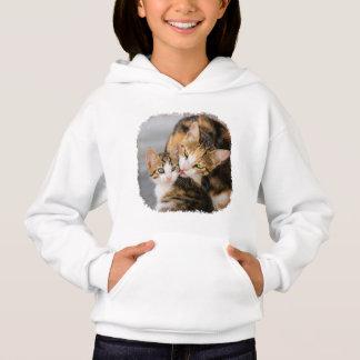 Enfantez la photo animale de chaton mignon