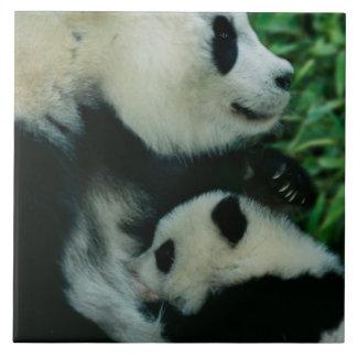 Enfantez l'petit animal de soins de panda, Wolong, Grand Carreau Carré