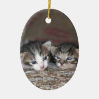 Enfants de mêmes parents de chaton ornement ovale en céramique