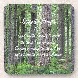 Ensemble de dessous de verre de photo de forêt de