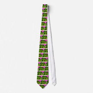 escargot cravate