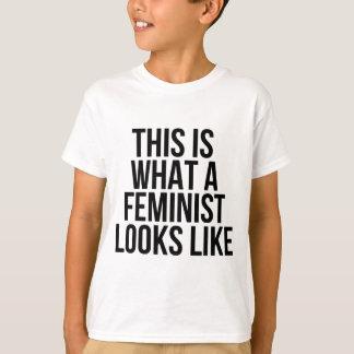 Est c'à ce qu'un féministe ressemble - le t-shirt
