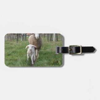 Étiquette À Bagage Agneau et moutons