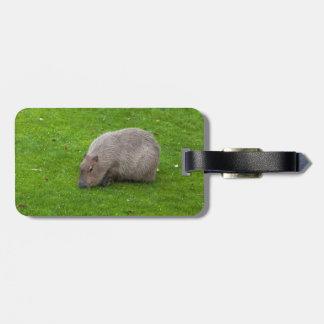 Étiquette À Bagage Capybara animal extraordinaire
