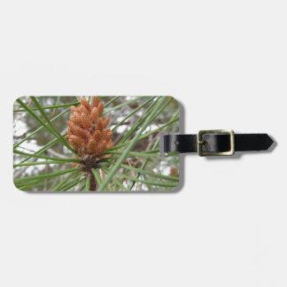 Étiquette À Bagage Cônes non mûrs de mâle ou de pollen de pin