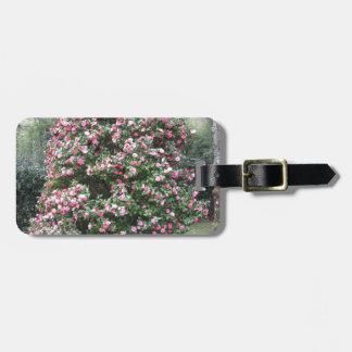 Étiquette À Bagage Cultivar antique de fleur de cognassier du Japon