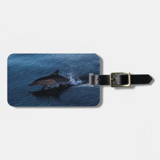 Étiquette À Bagage Dauphin de Bottlenose outre du paradis de surfers